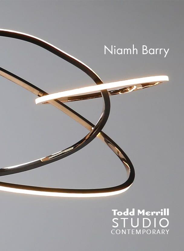 Niamh Barry Banner