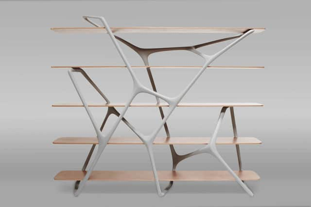Noé Duchaufour-Lawrance Naturoscopie I, Shelf/Bookcase/Space divider, 2012 Galerie BSL